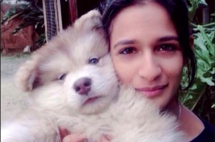 Yumna and Tydus the Dog - alaskan malamute Adopt a Pet