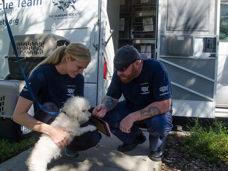 Image result for animal rescue team