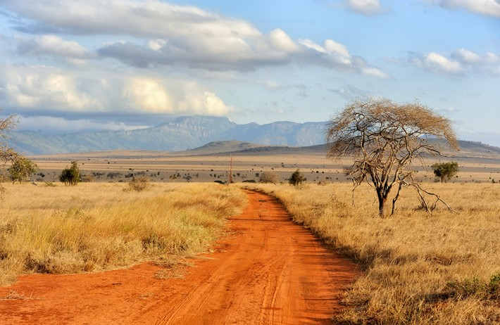 Image result for africa picture